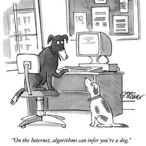 Dog Algorithm
