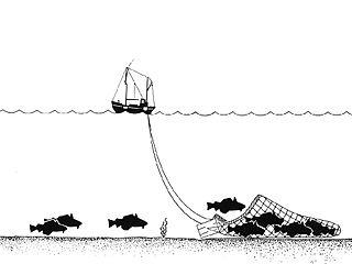 320px-Trawling_Drawing